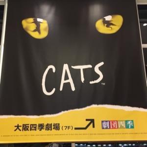 CATSに魅了された夜@劇団四季