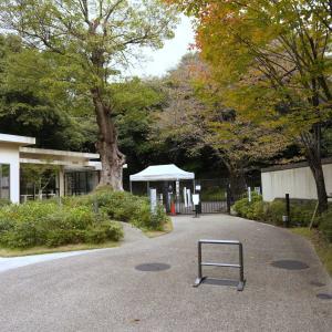 Tokyo Metropolitan Teien Art Museum 東京都庭園美術館