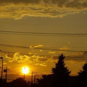 虹と夕日とオレンジの道