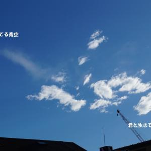 秋分の日快晴~お洗濯日和~