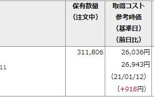 野村インド株投資が爆上げじゃ!