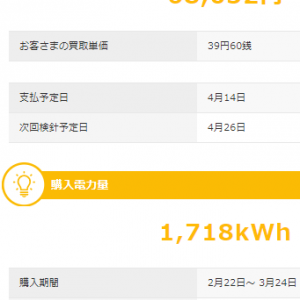 3月も太陽光発電で儲けさせていただきました。