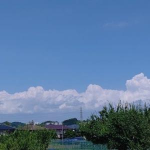 8月―(7)夏休み・お盆休みとの闘い!