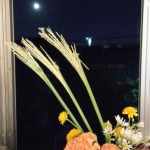 中秋の名月を眺めながら・・お茶の時間。。♪ 冷蔵庫のうしろにあるもの。。