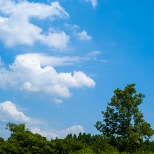 white cloud floating in the blue sky ...