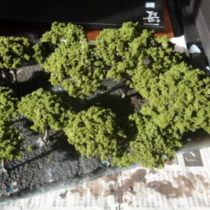 木を植えています