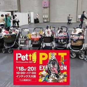 ペット博・インテックス大阪 お家引きこもりから3ヵ月ぶりに脱出
