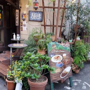 青山散歩とランチとお茶