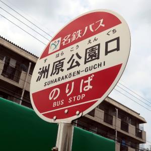【刈谷】現代の迷い人