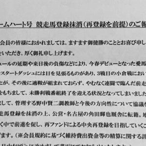 【ストームハート】引退通知、名古屋でキッカケを掴めるか!?