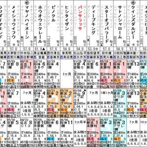 【パンサラッサ】成長した姿を見たい! 6/20阪神8R・出走確定