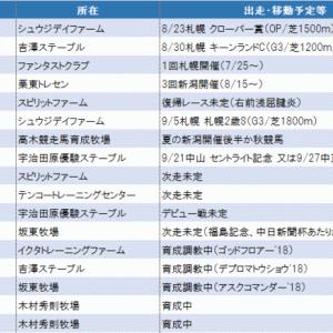 今週こそはひと休み(^^)、そして8月の重要レースは?