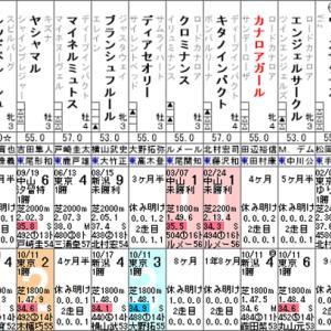 【カナロアガール】毎度毎度の今度こそ! 10/31東京8R・出走確定