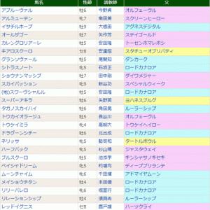 【グランソヴァール】今後を占う重要レース 1/23中京 豊明S・特別登録