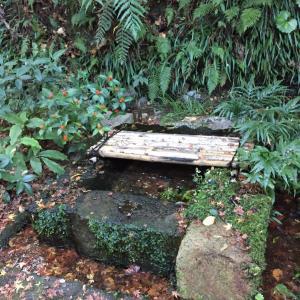 妙見石原荘 露天風呂椋の木