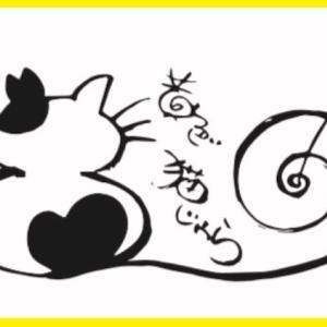 """リブログ """"19匹の未手術の猫たち〰手術へ"""""""