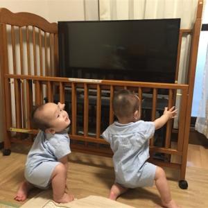 10ヵ月目突入!多指症続報と、双子の夜泣きと、日々のあれこれ。