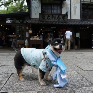 9/11深大寺お散歩