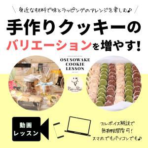 【通わず学ぶ】ピッピとプップのアイシングクッキー動画レッスン一覧