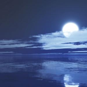 自分の感覚は誰かに否定されるものではない~《掬水月在手》