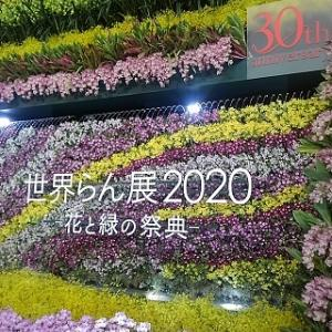 世界らん展2020に行ってきました。