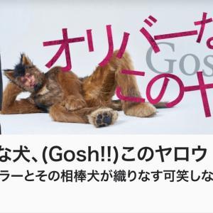 なんなのこの豪華俳優陣? NHKの面白すぎるドラマ!