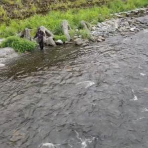 安曇川朽木 前半編YouTubeアップしました