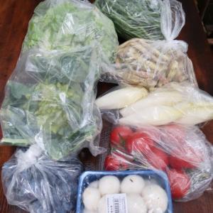 こんなに買ったのに安い!フランスの野菜のお値段と物価