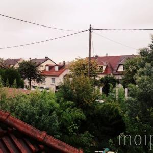 パリの曇り空と犬とフレンチポップス