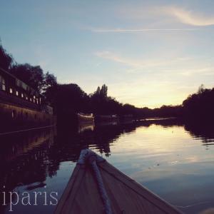 白鳥と出会ったマルヌ川の美しい夕暮れ