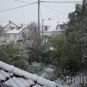 プチご報告。パリは雪です