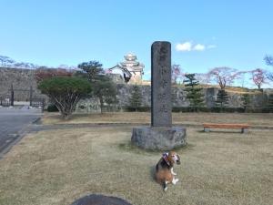 福島県・白河 下郷 秋の紅葉満喫旅行 1日目