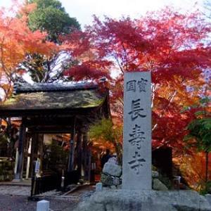 湖南三山の紅葉・長寿寺