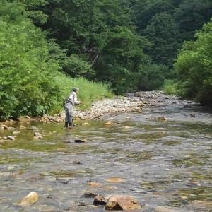 8/4 真夏のイワナ釣り~フライ名人と九頭竜川水系へ~ Lesson 48