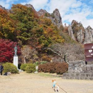 11/16 妙義山(中間道)の紅葉