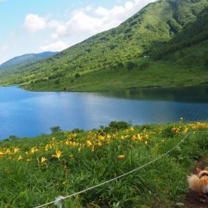 花の野反湖にお泊り! 愛郷ぐんまプロジェクト
