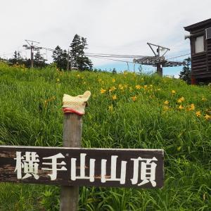 8/11 横手山(志賀高原)① キスゲ咲く雲上の散歩道