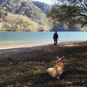 11/14~15 菅沼キャンプ 奥日光4つの湖をめぐる旅②