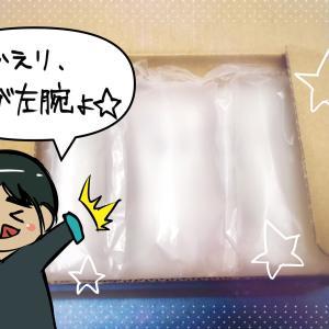 【任天堂Switch】ジョイコンを修理に出してみた!