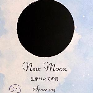 今日は新月