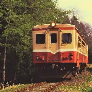 運行休止前の南部縦貫鉄道 1997年