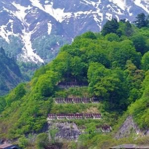 田子倉湖畔を行く東北地域本社色のキハ40