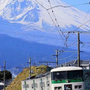 富士山を背に185系踊り子13号