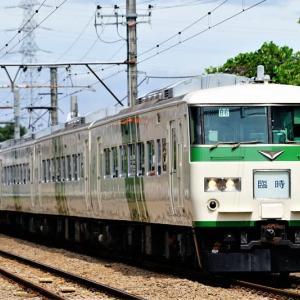 青梅線を行く185系快速 鎌倉あじさい号