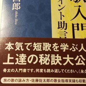 【本】にわか勉強の短歌 〜短歌に興味がなくても読んでほしい2冊〜
