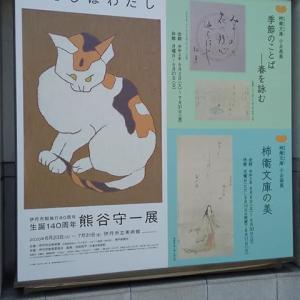 熊谷守一展「わたしはわたし」@伊丹市立美術館に行ってきました!