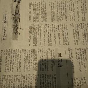 【神戸新聞文芸】落選しました。