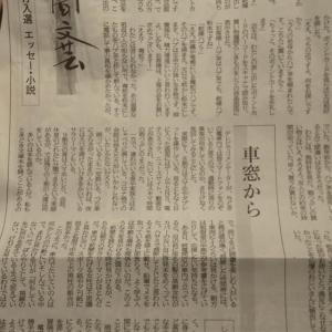 神戸新聞文芸、落選しました。 〜入選作「ハブ茶とハーブティ」の「あるようでないやりとり」〜