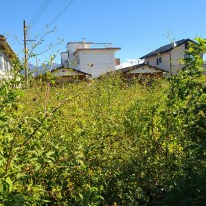 685.渋川市にて生前整理