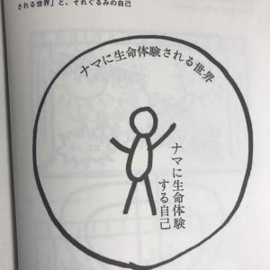 哲学する仏教から 第6図は天上天下唯我独尊 マインドフルネスで誰が気づいているのか